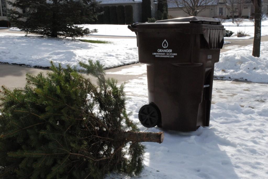 Christmas tree collection | Granger