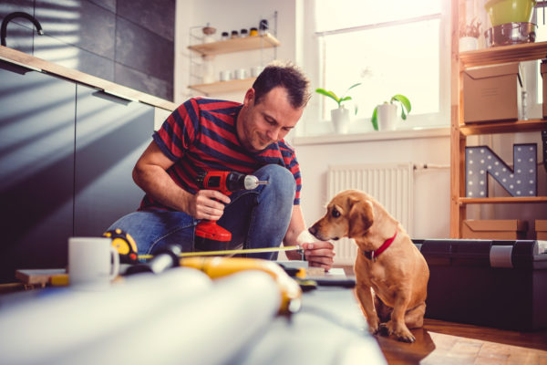 Man with dog building kitchen cabinets and using a cordless drill